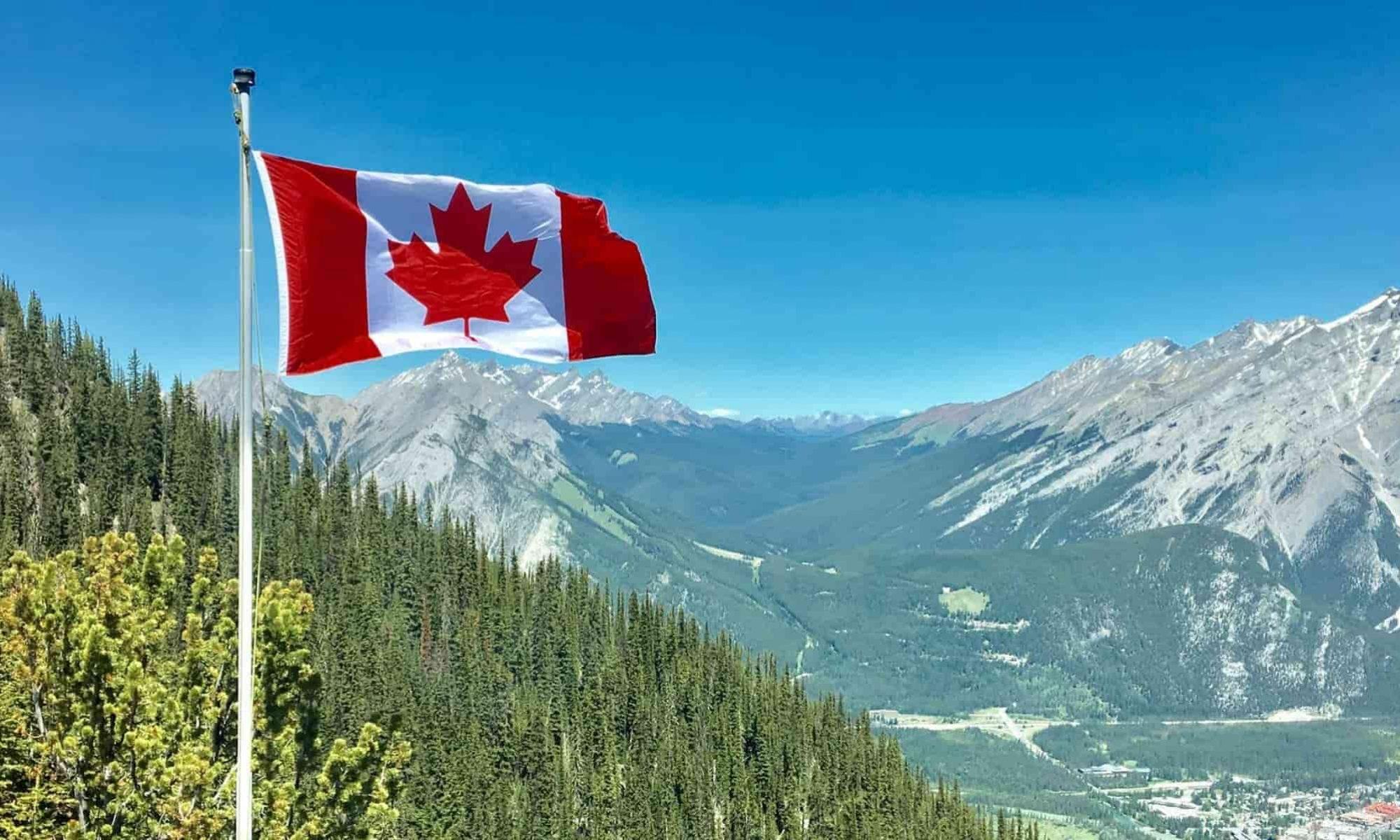Homicide Canada